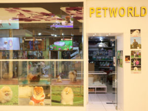 akmerkez-petworld-magaza-1